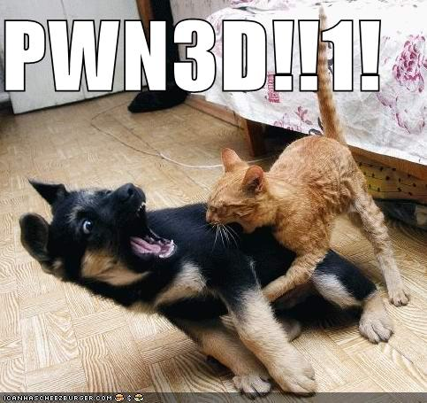 http://www.usagisoft.com/josh/images/funny-pictures-cat-pwns-dog.jpg